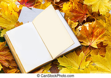 Book on autumn leaves.