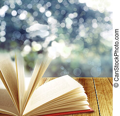 Book - Open book and blurred background