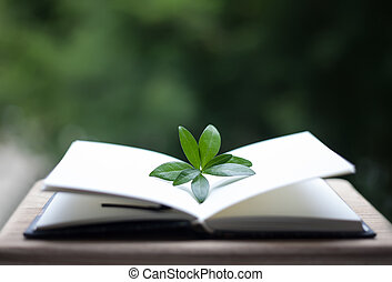 book or notebook with leaves on neture background - books or...