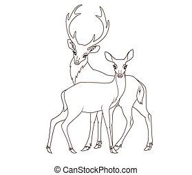 book:, paar, kleuren, vrijstaand, deers