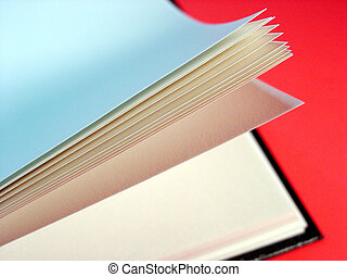Book - Blank Pages in Book