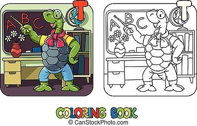 book., tortuga, abc, alfabeto, profesor, colorido, t