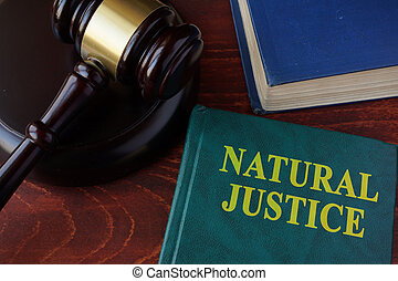 Book with title natural justice and gavel.