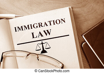 Immigration Law - Book with words Immigration Law and...