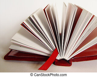 bookmark - booklet bound in red velvet