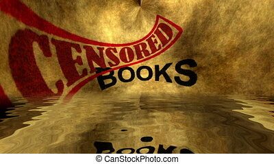 Books censored text grunge concept