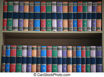 bookshelf with books neatly standing with colored covers