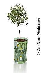 boompje, groeiende, van, eurobiljet