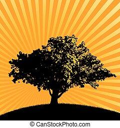 boompje, kleurrijke, achtergrond, feestelijk