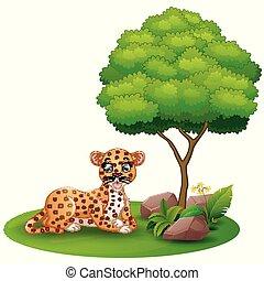 boompje, luipaard, dons, leggen, achtergrond, onder, witte , spotprent