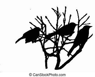 boompje, vogels, zittende