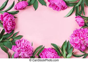 boorder, の, ピンク, シャクヤク, 花, ∥ように∥, フレーム, 上に, punchy, パステル, pink., コピースペース, ∥ために∥, text., 上, ビュー。, 平ら, lay.