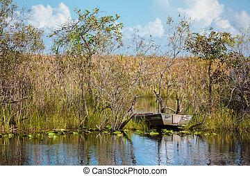boot, tour, durch, der, sumpf, in, der, everglades nationalpark, florida