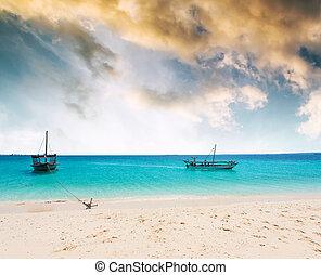 bootjes, dichtbij, een, seashore, verankeerd