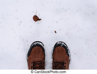 boots and dry leaf in winter