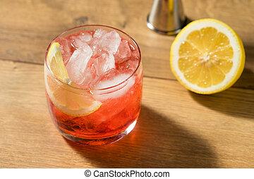 Boozy Refreshing Campari Spritz Cocktail with a Lemon ...