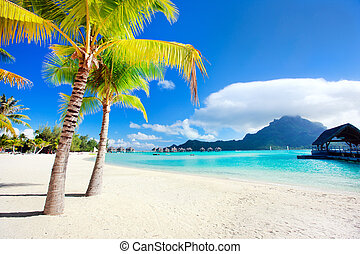 Beautiful beach with a view of Otemanu mountain on Bora Bora island