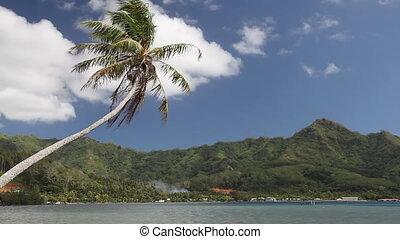 Bora Bora Lagoon in French Polynesia (Realtime)