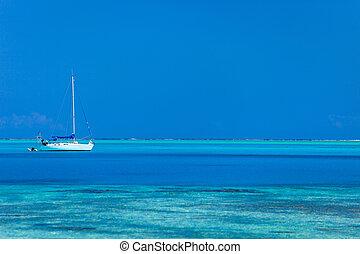 Bora Bora lagoon - White yacht at stunning tropical lagoon...