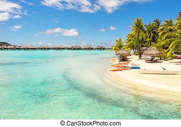 bora, spiaggia, concetto, bora, kayak, francese, rilassamento, ricorso, sabbia, polynesia, pacifico, arancia, bianco, vacanza, sud