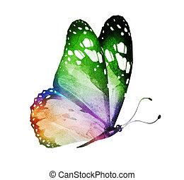 borboleta, aquarela, isolado, branca