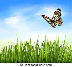 borboleta, azul, sky., natureza, vetorial, experiência verde, capim