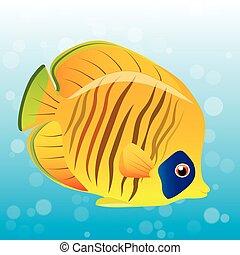 borboleta, dourado, peixe