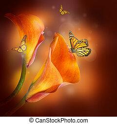 borboleta, escuro, lírios, fundo, multi-colorido
