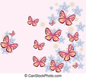 borboleta, experiência., coloridos