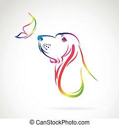 borboleta, imagem, cão, vetorial, fundo, branca