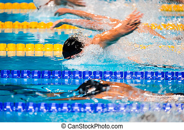 borboleta, raça, natação