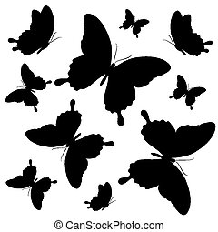 borboletas, desenho