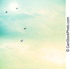 borboletas, em, a, céu