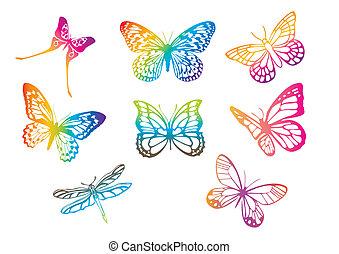 borboletas, vetorial