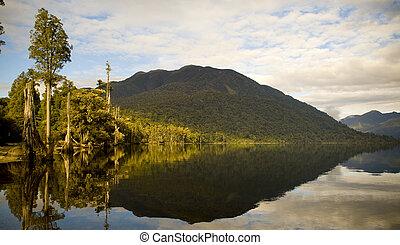 bord, réflexions, forêt lac