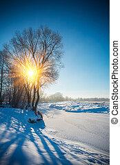 borda, de, pequeno, rio, em, inverno