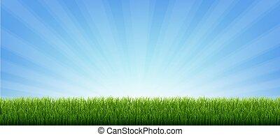 borda, experiência verde, bandeira, sunburst, capim