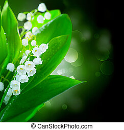 borda, flores, desenho, lily-of-the-valley