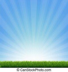 borda, verde azul, sunburst, capim