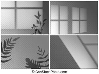 bordas, monstera, effects., mockup, luz, natural, camada, sombras, folhas, shadow., palma, realístico, ramos, transparente, janela, vetorial