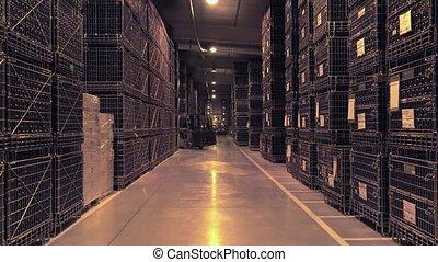Bordeaux Saint Emilion bottling uni - handling wine bottles...