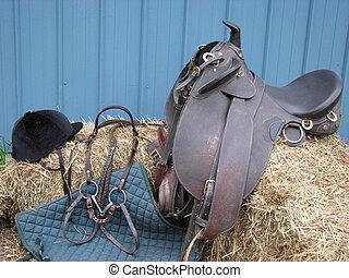 bordeggiare, equestre