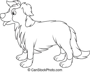 Border collie - Black and white vector illustrations of a...