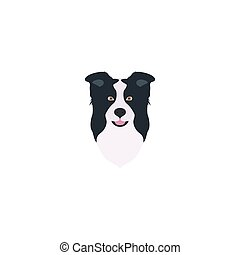 Border collie head. - Abstract vector illustration of border...