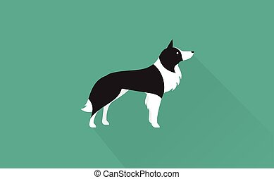 border collie icon - border collie flat illustration clean...