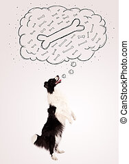 Border collie with thought bubble thinking about a bone -...
