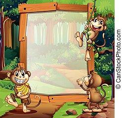Border design with three monkeys in jungle