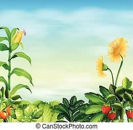 Border design with vegetables and fruit