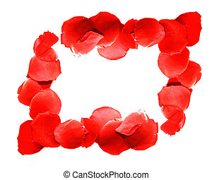 border from red rose petals over white