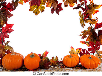 Border of Assorted sizes of pumpkins on hay on white